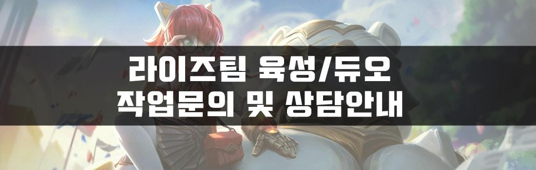 롤대리 롤경작 라이즈팀